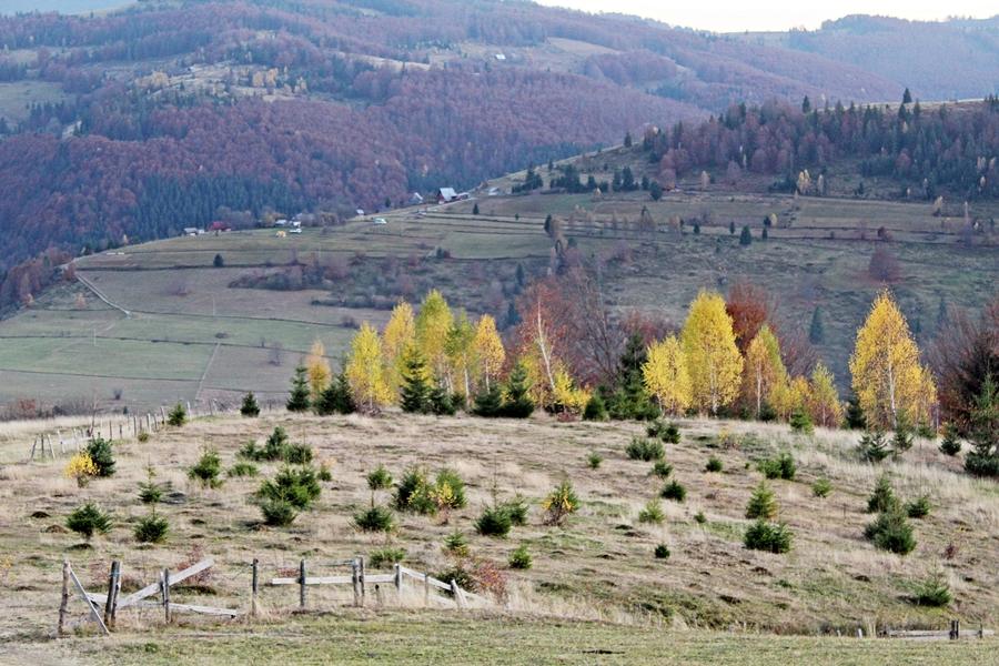 Úton az őszi Bihar-hegységben